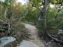 Raccoon Mountain Trail